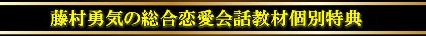 fujimuratokute-h3